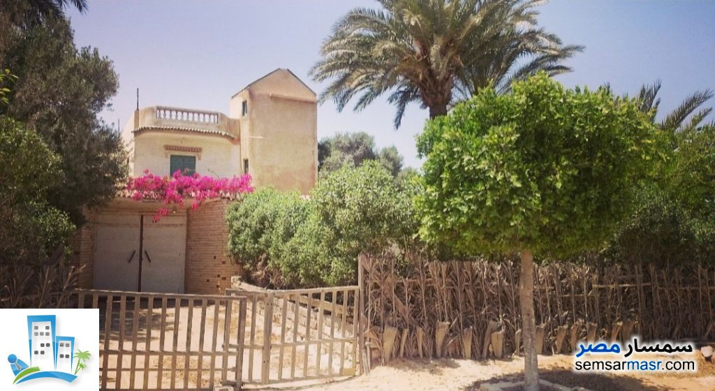 Ad Photo: Villa 10 bedrooms 4 baths 1000 sqm super lux in Borg Al Arab  Alexandira