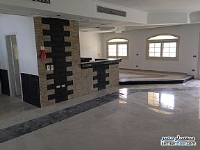 Ad Photo: Villa 3 bedrooms 2 baths 395 sqm extra super lux in Madinaty  Cairo