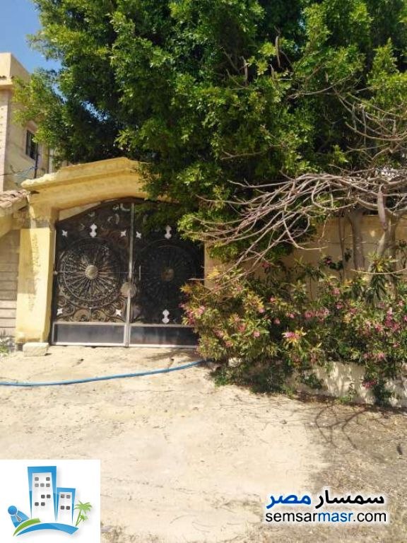 Ad Photo: Villa 3 bedrooms 2 baths 600 sqm in King Maryot  Alexandira