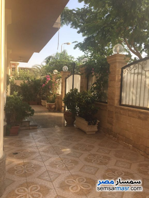 Photo 9 - Villa 20 bedrooms 12 baths 600 sqm extra super lux For Sale First Settlement Cairo