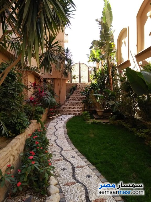 Photo 6 - Villa 12 bedrooms 12 baths 800 sqm extra super lux For Sale West Somid 6th of October