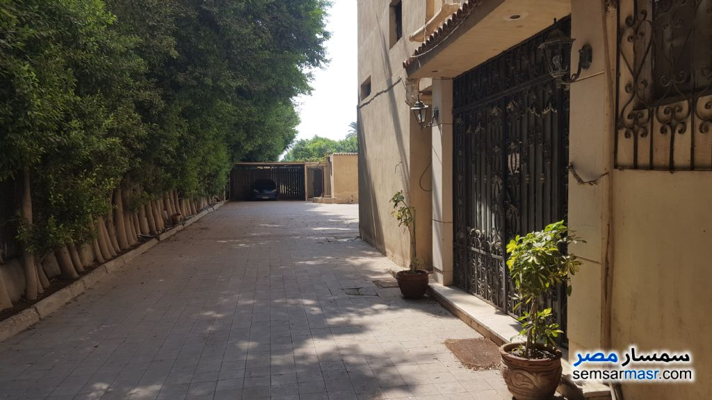 Photo 4 - Villa 5 bedrooms 4 baths 4,200 sqm super lux For Sale Maryotaya Giza