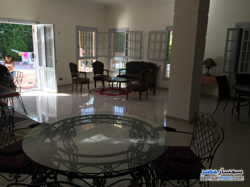 Photo 12 - Villa 6 bedrooms 6 baths 1,300 sqm extra super lux For Sale King Maryot Alexandira