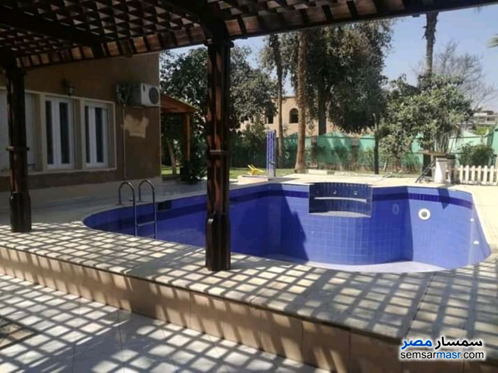 Photo 1 - Apartment 5 bedrooms 3 baths 400 sqm super lux For Rent Maadi Cairo