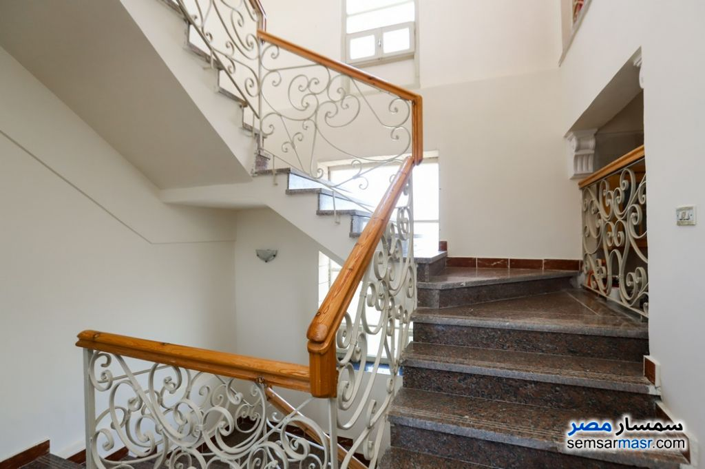 Photo 11 - Villa 6 bedrooms 5 baths 1,600 sqm super lux For Sale King Maryot Alexandira
