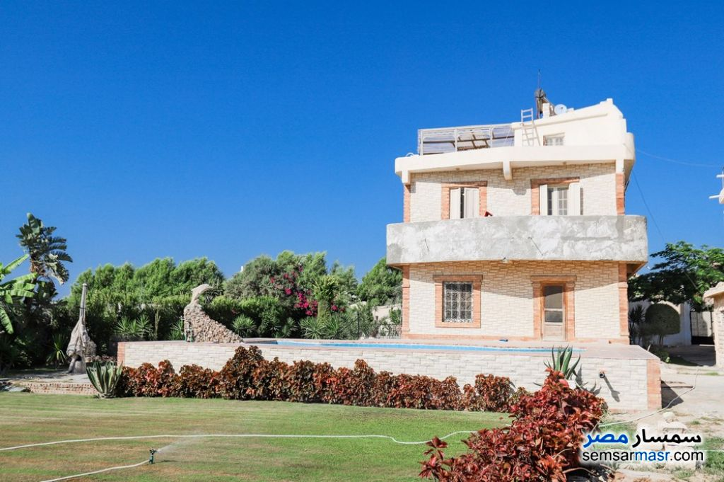 Photo 30 - Villa 6 bedrooms 5 baths 1,600 sqm super lux For Sale King Maryot Alexandira