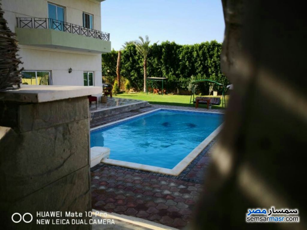 Photo 10 - Villa 7 bedrooms 8 baths 2,100 sqm lux For Sale Cairo Alexandria Desert Road Giza