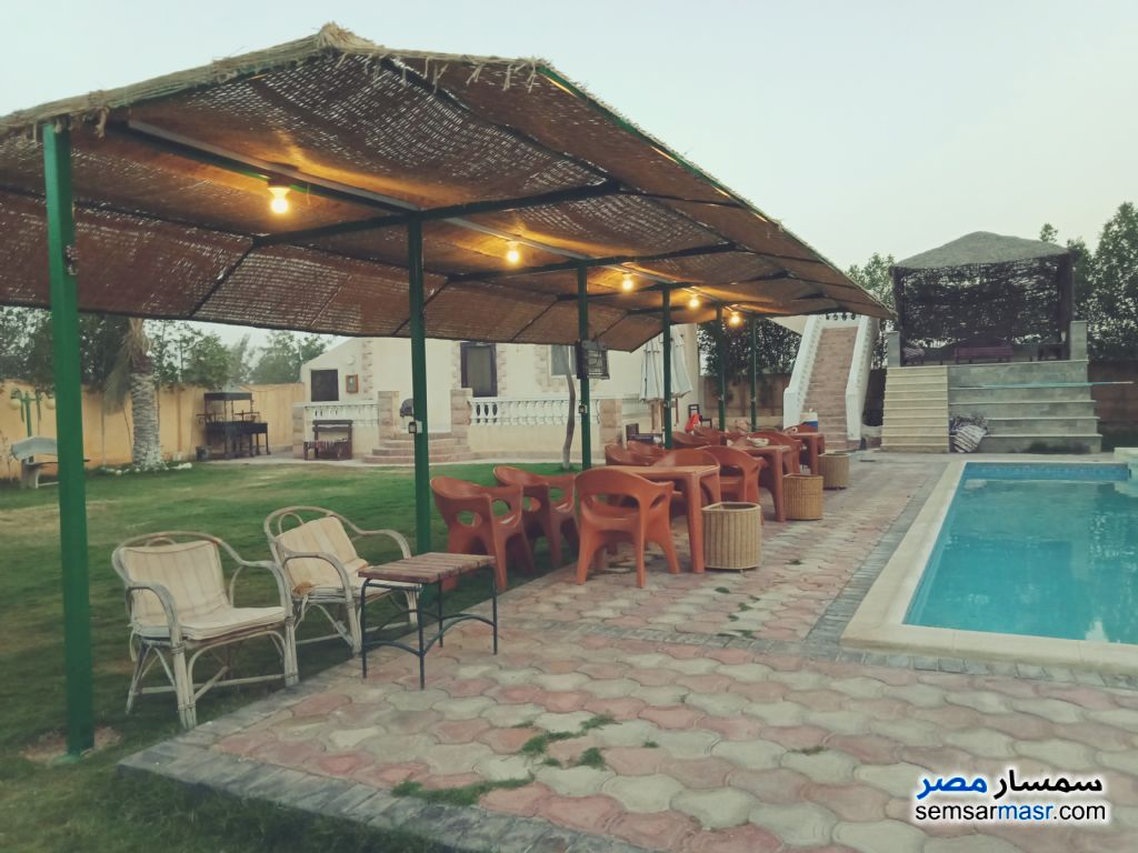 Photo 15 - Villa 7 bedrooms 8 baths 2,100 sqm lux For Sale Cairo Alexandria Desert Road Giza