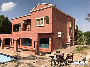 Ad Photo: Villa 5 bedrooms 4 baths 500 sqm super lux in West Somid  6th of October
