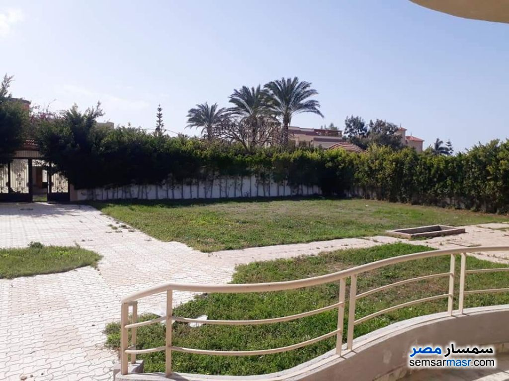 Photo 4 - Villa 4 bedrooms 3 baths 1,400 sqm extra super lux For Sale Borg Al Arab Alexandira