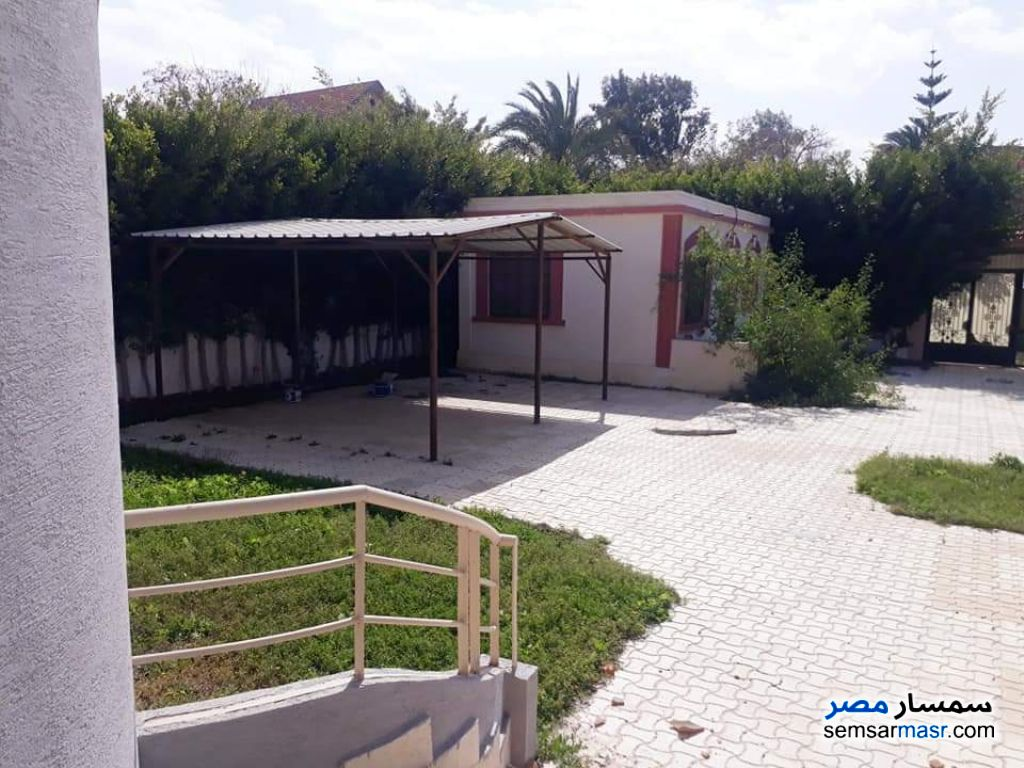 Photo 5 - Villa 4 bedrooms 3 baths 1,400 sqm extra super lux For Sale Borg Al Arab Alexandira