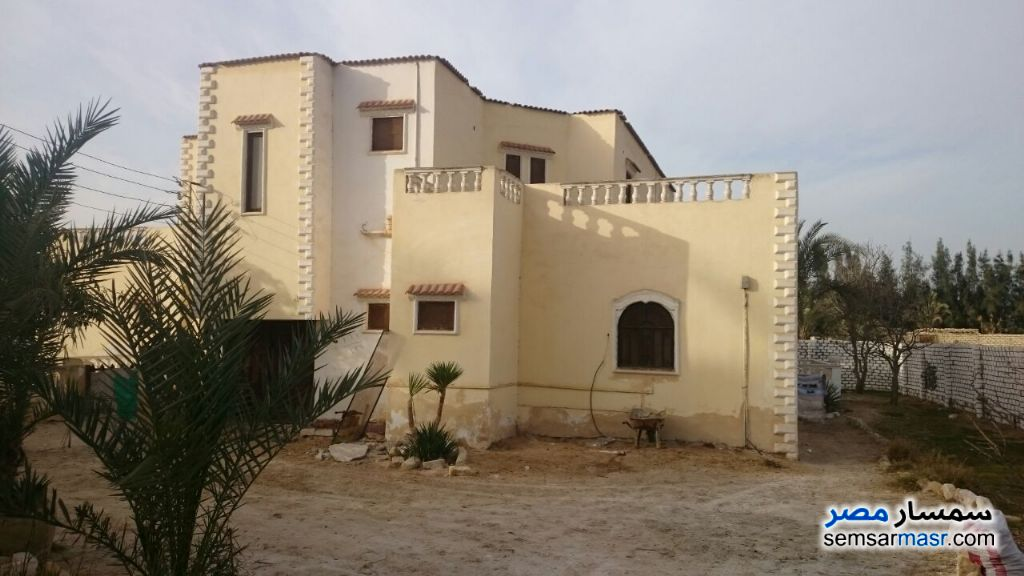 Photo 2 - Villa 4 bedrooms 3 baths 2,950 sqm lux For Sale Fayed Ismailia