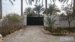 Villa 4 bedrooms 3 baths 2,950 sqm lux For Sale Fayed Ismailia - 4