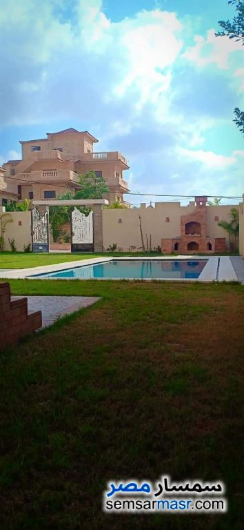 Photo 12 - Villa 5 bedrooms 5 baths 500 sqm extra super lux For Sale King Maryot Alexandira