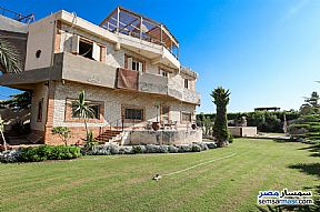 Ad Photo: Villa 6 bedrooms 5 baths 1600 sqm lux in King Maryot  Alexandira