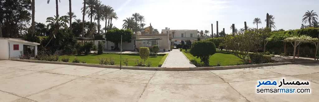 Photo 9 - Apartment 15 bedrooms 4 baths 56,175 sqm extra super lux For Sale AL Mansoureyah Giza