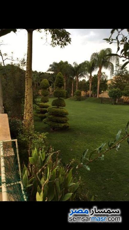 Photo 5 - Villa 17 bedrooms 13 baths 1,000 sqm extra super lux For Sale AL Mansoureyah Giza
