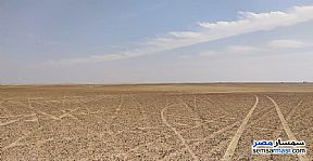 Ad Photo: Farm 100 acre in El Alamein  Matrouh