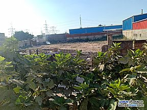Ad Photo: Land 1500 sqm in Amereyah  Alexandira