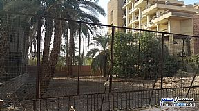 Ad Photo: Land 824 sqm in Luxor City  Luxor