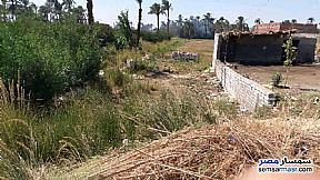 Land 3 acre For Sale El Fath Asyut - 5