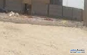 Ad Photo: Land 650 sqm in Fayoum City  Fayyum