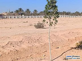 Ad Photo: Land 1000 sqm in Sphinx City  6th of October
