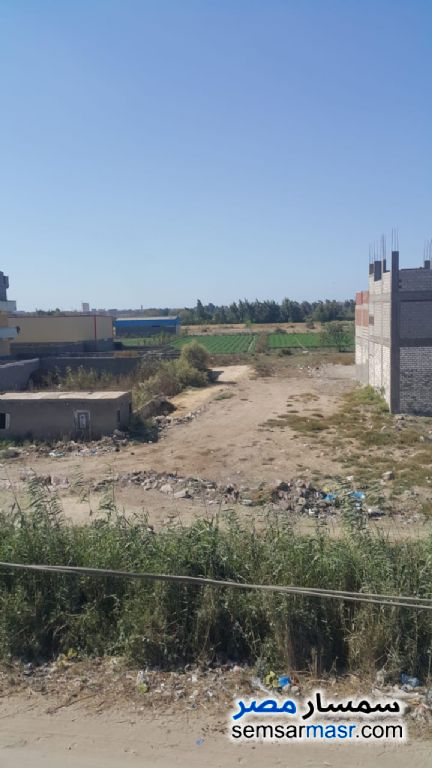 Ad Photo: Land 250 sqm in Awayed  Alexandira