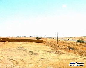 Ad Photo: Farm 10 acre in Heliopolis  Cairo