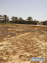 Ad Photo: Land 7000 sqm in Borg Al Arab  Alexandira
