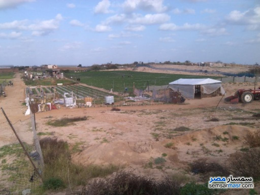 Photo 1 - Land 159 sqm For Sale Mansura Daqahliyah