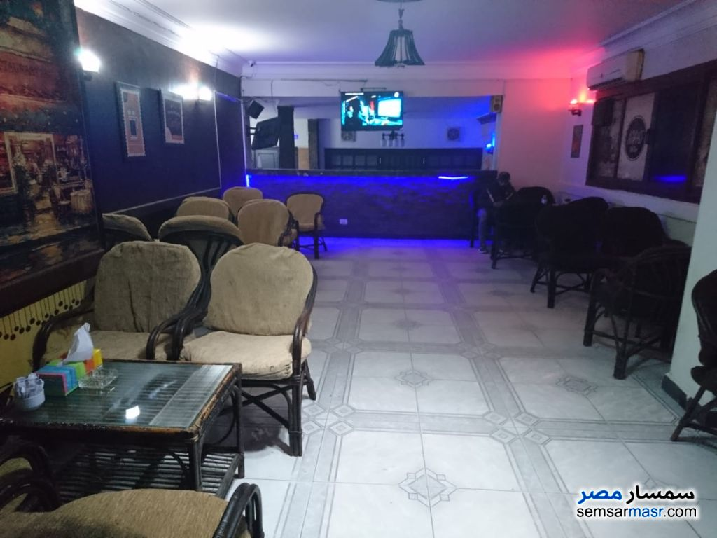 Photo 6 - Commercial 250 sqm For Rent Giza District Giza