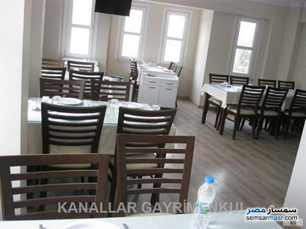 Photo 1 - Commercial 130 sqm For Rent Dokki Giza