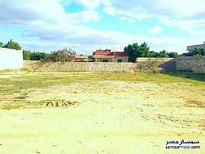 Ad Photo: Land 1000 sqm in Amereyah  Alexandira