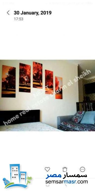 Ad Photo: Apartment 1 bedroom 1 bath 48 sqm in Sharm Al Sheikh  North Sinai