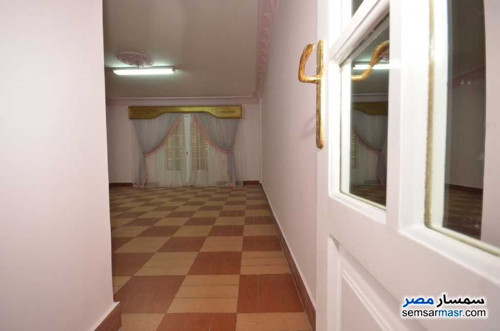 Photo 27 - Apartment 3 bedrooms 2 baths 200 sqm extra super lux For Rent Al Lbrahimiyyah Alexandira