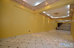 Apartment 3 bedrooms 2 baths 200 sqm extra super lux For Rent Al Lbrahimiyyah Alexandira - 14