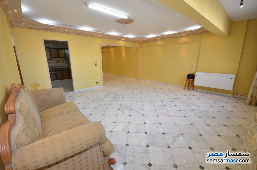 Photo 24 - Apartment 3 bedrooms 2 baths 200 sqm extra super lux For Rent Al Lbrahimiyyah Alexandira