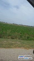 Ad Photo: Farm 60 acre in El Ayat  Giza