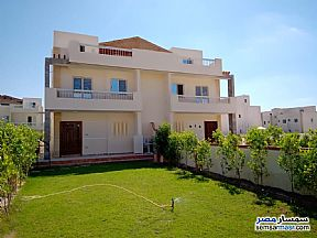 Ad Photo: Apartment 3 bedrooms 2 baths 180 sqm in North Coast  Matrouh