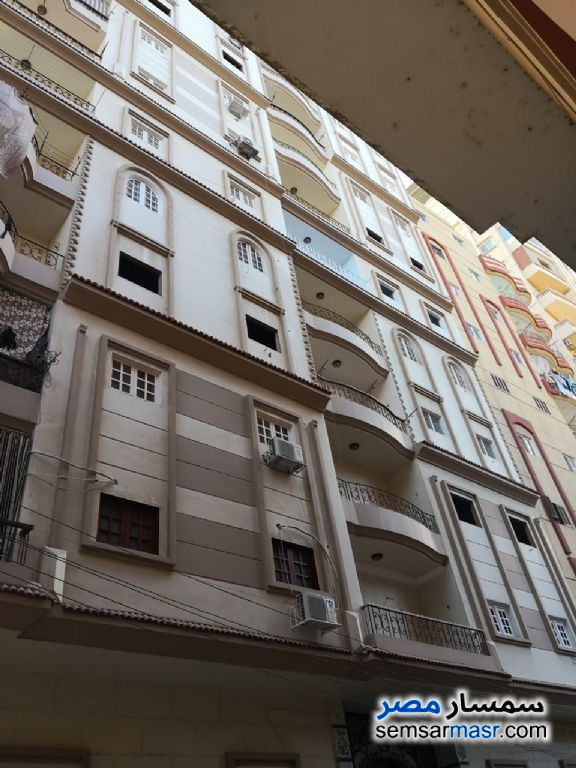 Photo 2 - Apartment 3 bedrooms 2 baths 150 sqm lux For Sale Talkha Daqahliyah