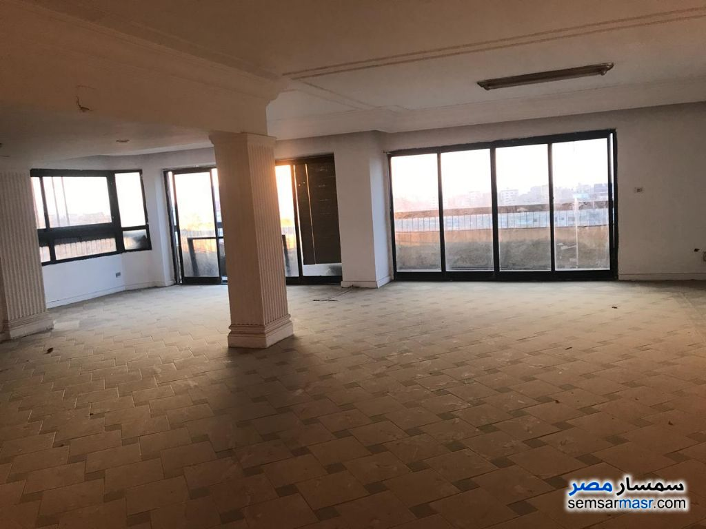 Ad Photo: Apartment 5 bedrooms 5 baths 550 sqm super lux in Mohandessin  Giza