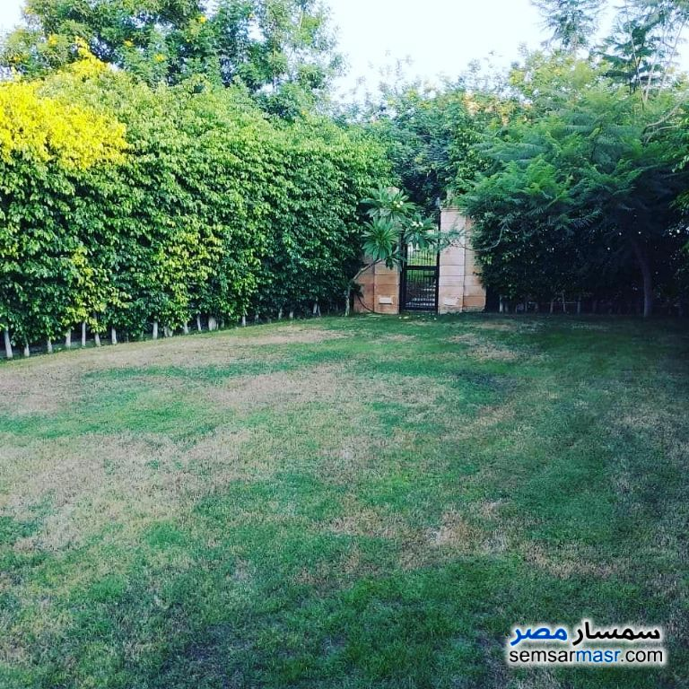 Photo 2 - Villa 4 bedrooms 4 baths 450 sqm extra super lux For Sale Madinaty Cairo