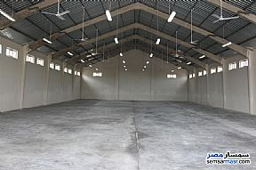 Ad Photo: Commercial 10000 sqm in Borg Al Arab  Alexandira