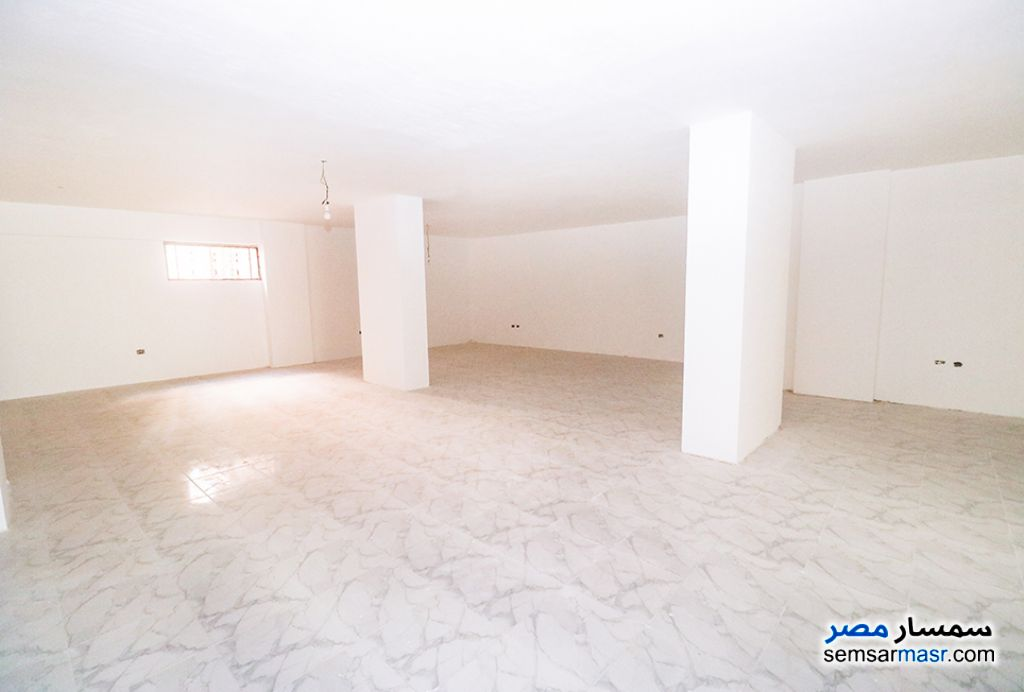 Ad Photo: Commercial 210 sqm in Sporting  Alexandira