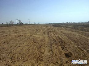 Ad Photo: Farm 14 acre in Suez District  Suez
