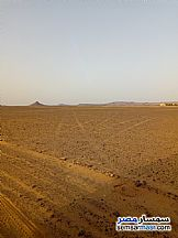 Ad Photo: Farm 40 acre in Bahariya Oasis  Giza