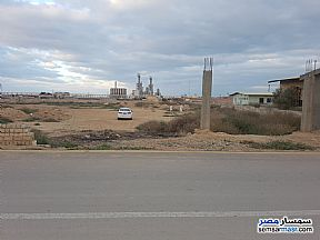 Ad Photo: Land 8400 sqm in Amereyah  Alexandira