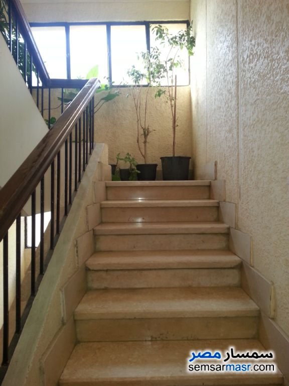 Photo 5 - Building 312 sqm extra super lux For Sale Mokattam Cairo