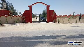 Farm 5 acre For Sale Wadi Al Natrun Buhayrah - 4
